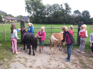 Kinder Ponyfeestjes